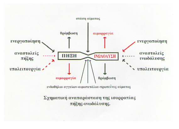 Γράφημα1