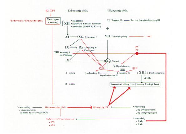 Γράφημα2