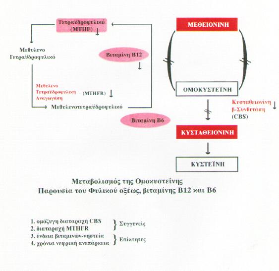 ΓΡΑΦΗΜΑ 21